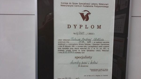dyplom weterynarii provet